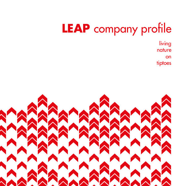 Leap Factory Company profile