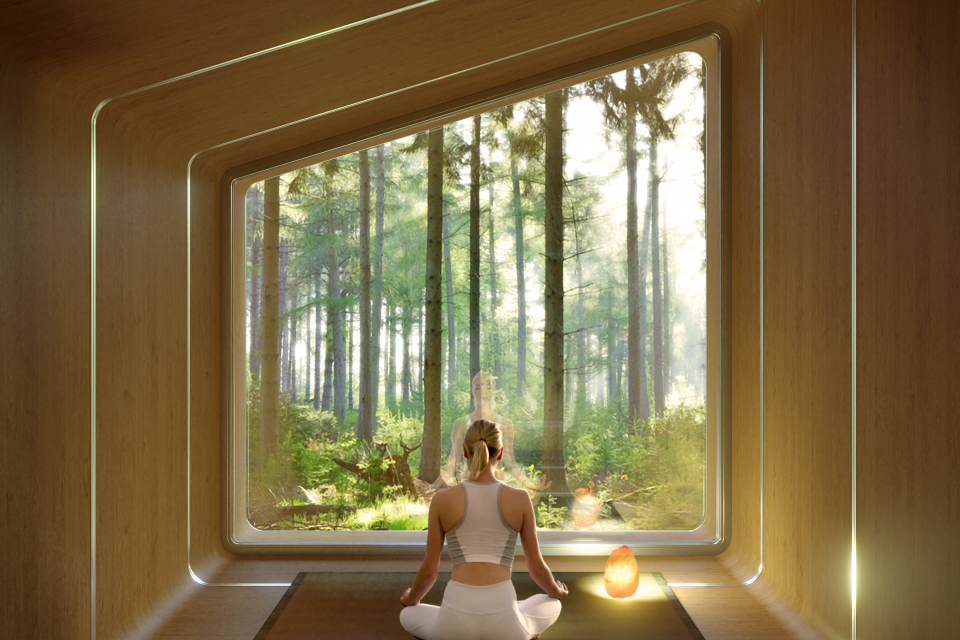 Leap Nest Mypod yoga meditation interior view
